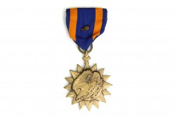 Air Medal 2