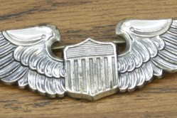 Pilot Aviation Badge