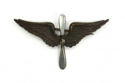 Prop and Wing Collar Insignia