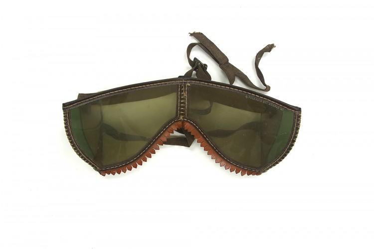 Polarizing Goggles